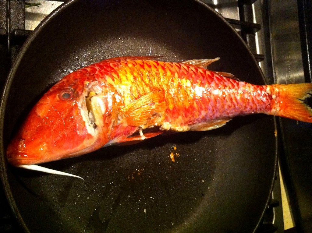 Pan Seared Red Mullet