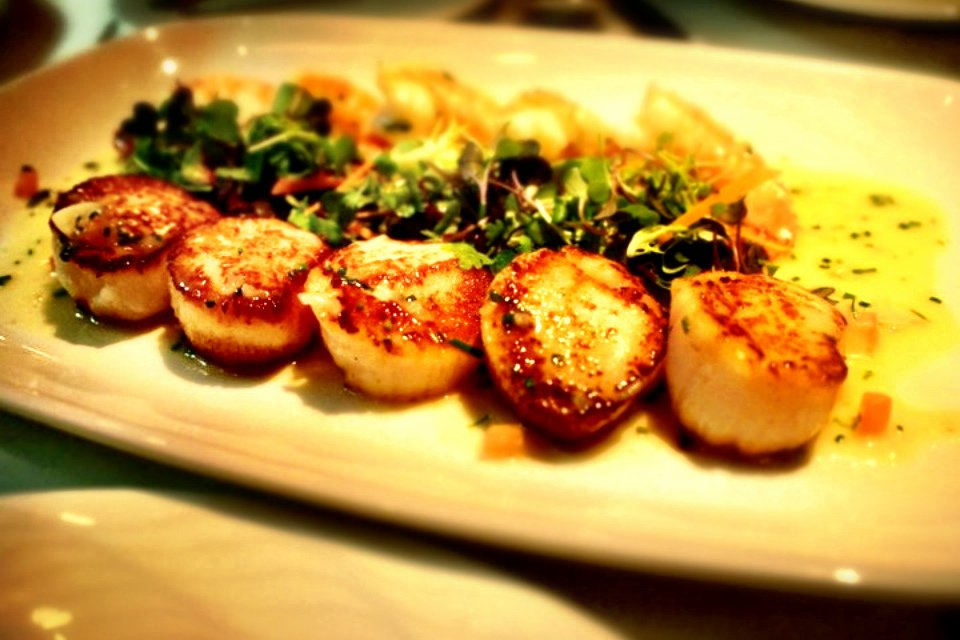 Seared Scallops - Blue Water Cafe